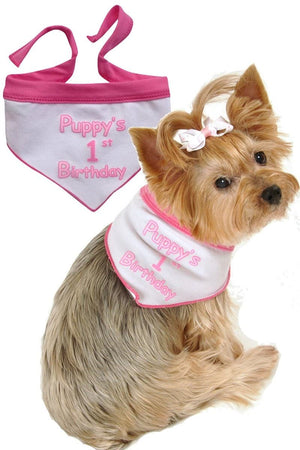 Puppys First Birthday Scarf - Posh Pet Glamour Boutique