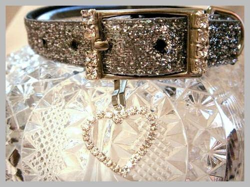 Silver Sparkler Collar - Posh Pet Glamour Boutique