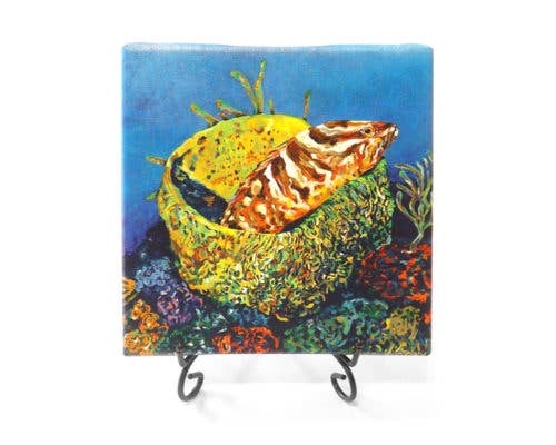 Grouper In A Basket Mini Giclee