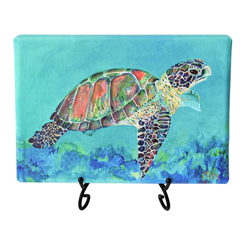 Marco's Turtle Holiday Mini Giclee