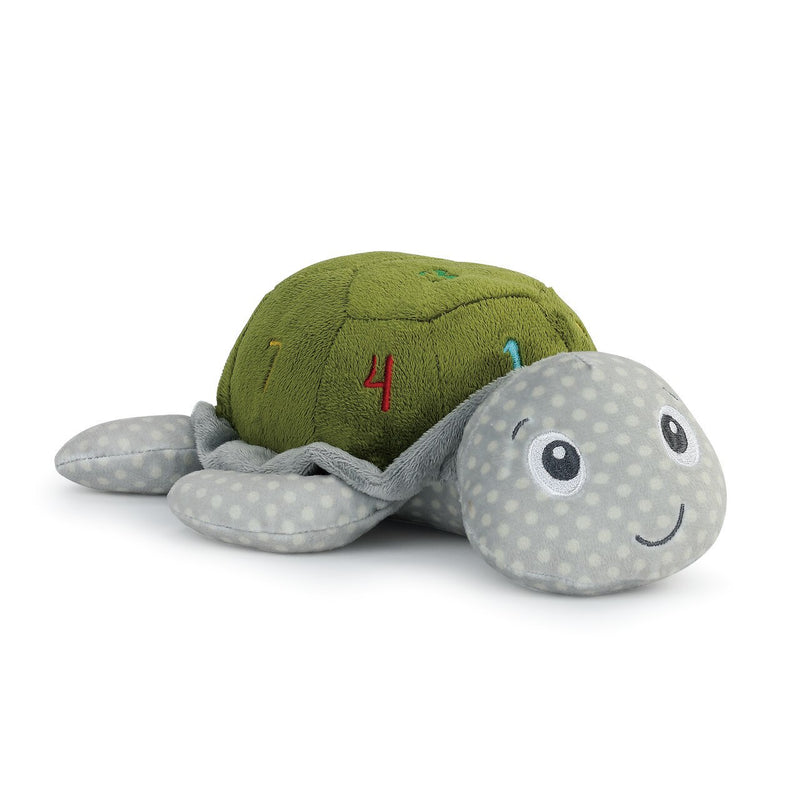 Learning Numbers Turtle