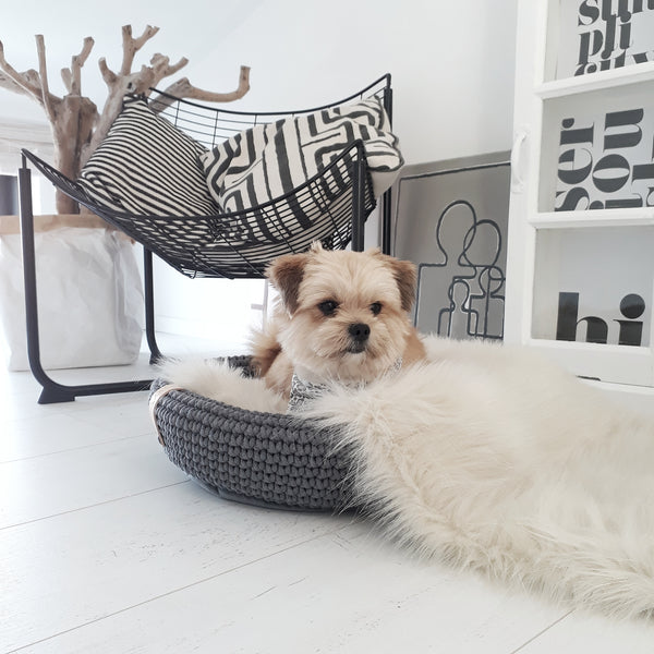COCO Dog Bed - Anthracite