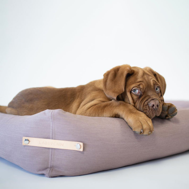 STOKKE Dog Bed