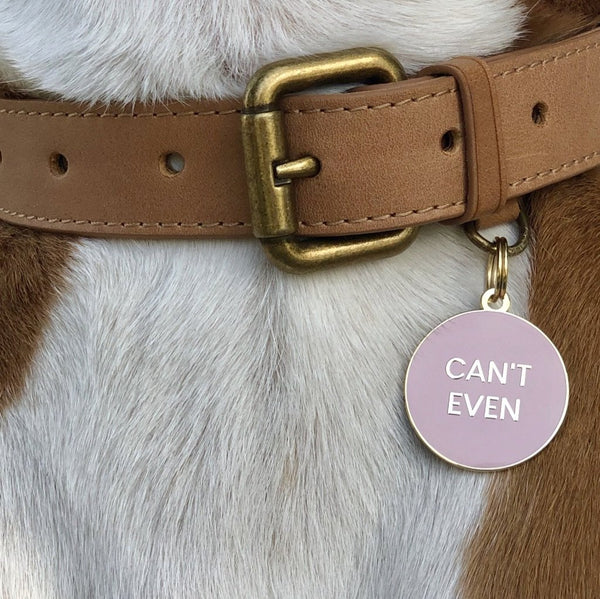 Can't Even Collar Tag