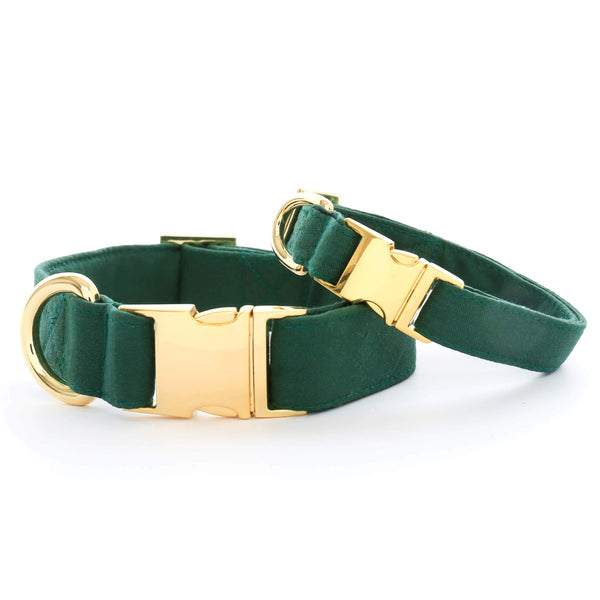 Evergreen Dog Collar