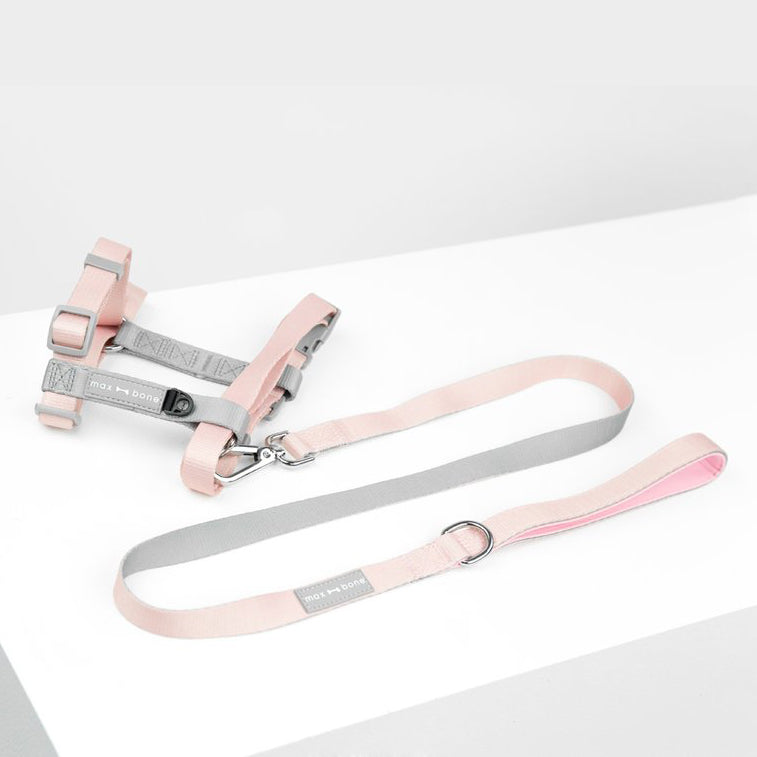 Daphne Harness + Leash Set
