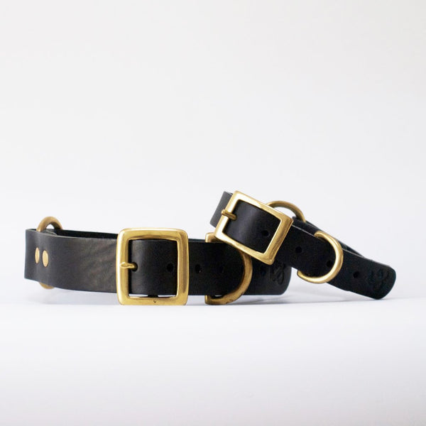 Leather Dog Collar - Black- SECOND