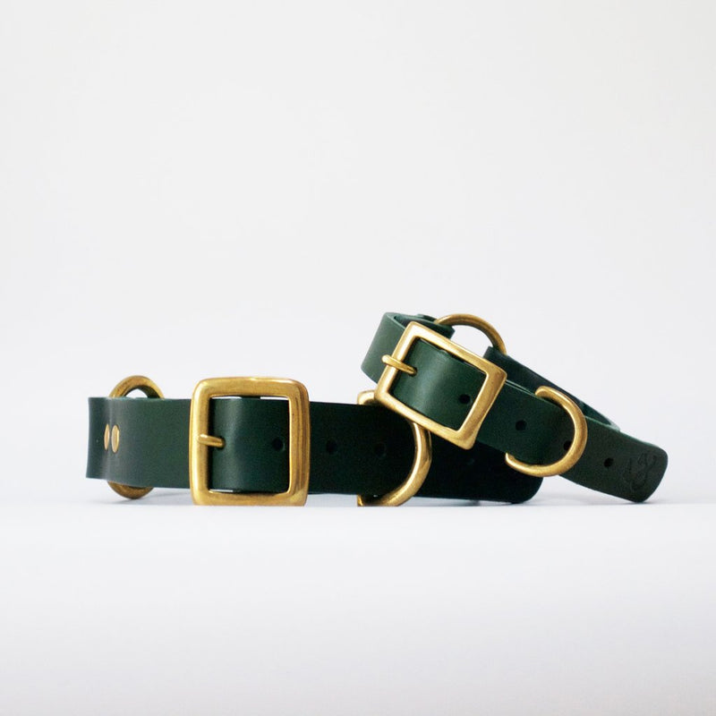 Leather Dog Collar - Green