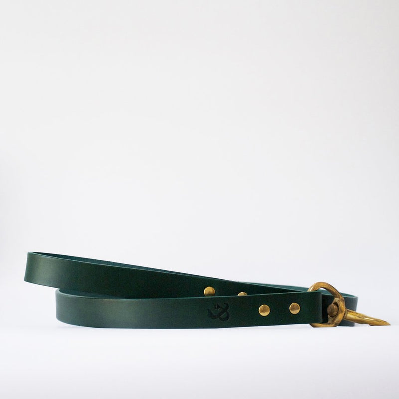 Leather Dog Lead - Green