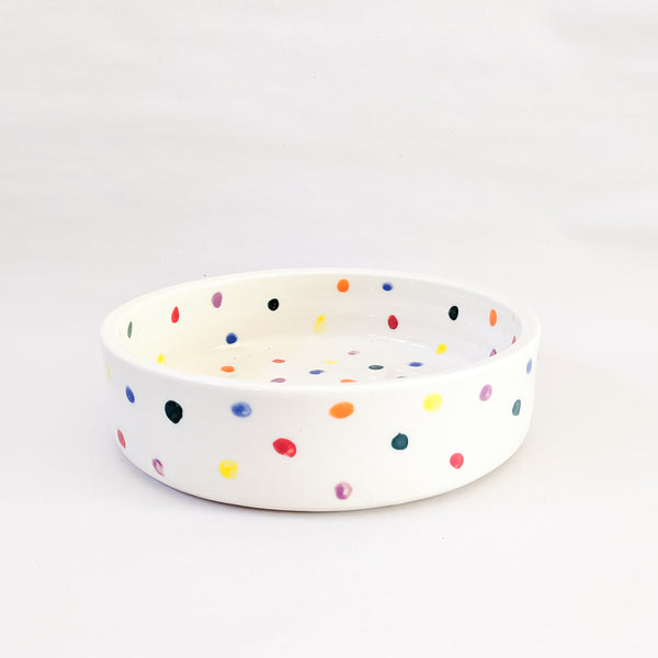 Funkyfetti Dog Bowl