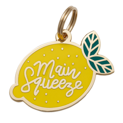 Main Squeeze Collar Tag