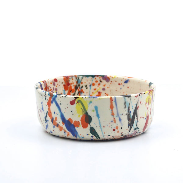 Rainbow Torrent Dog Bowl