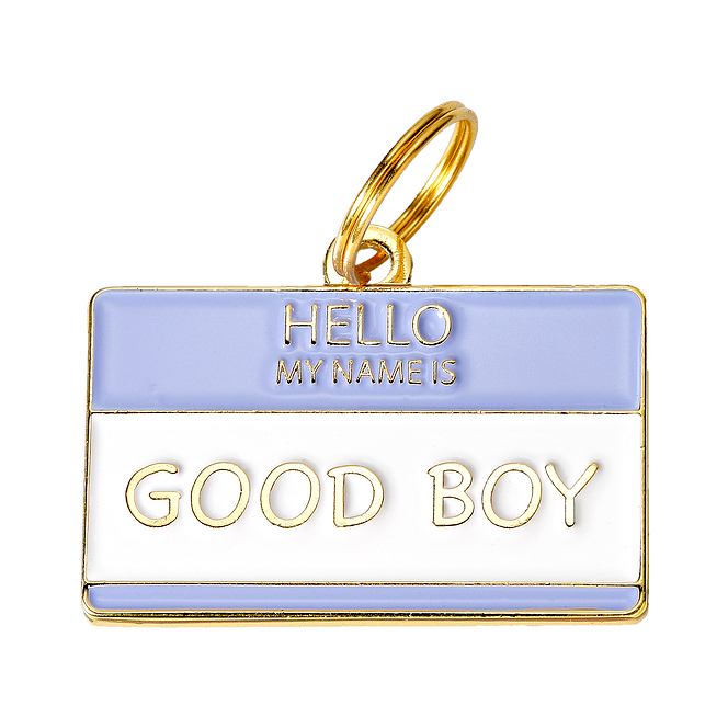 Hello my name is 'Good Boy' Collar Tag