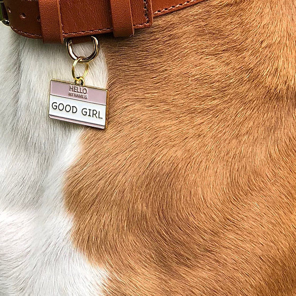 Hello my name is 'Good Girl' Collar Tag