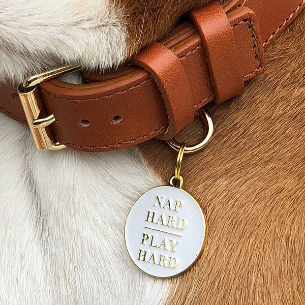 Nap Hard, Play Hard Collar Tag