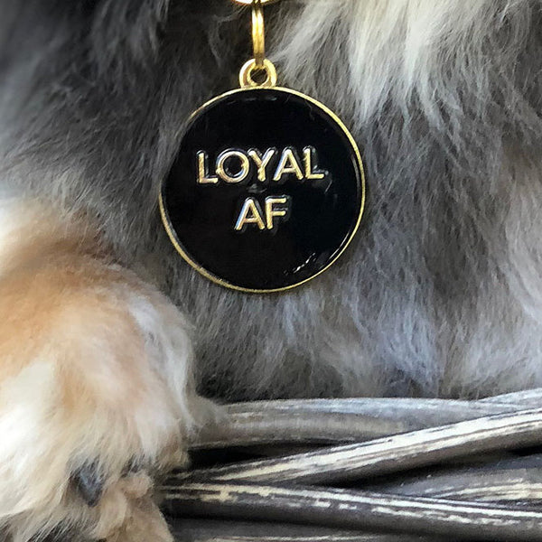 Loyal AF Collar Tag - Black