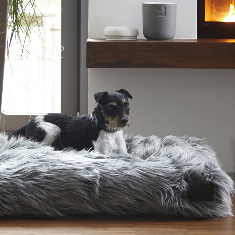 Capello Dog Cushion