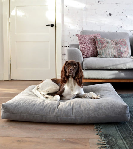 Duo Dog Cushion - Slate