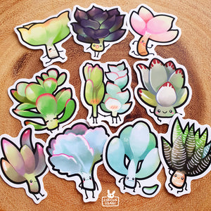 Sticker set | Succulent children