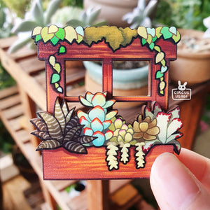 Wooden pin | Window of succulents
