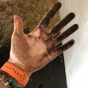 Dirty hand from black Florida sand. Fungus in sand on horse's skin