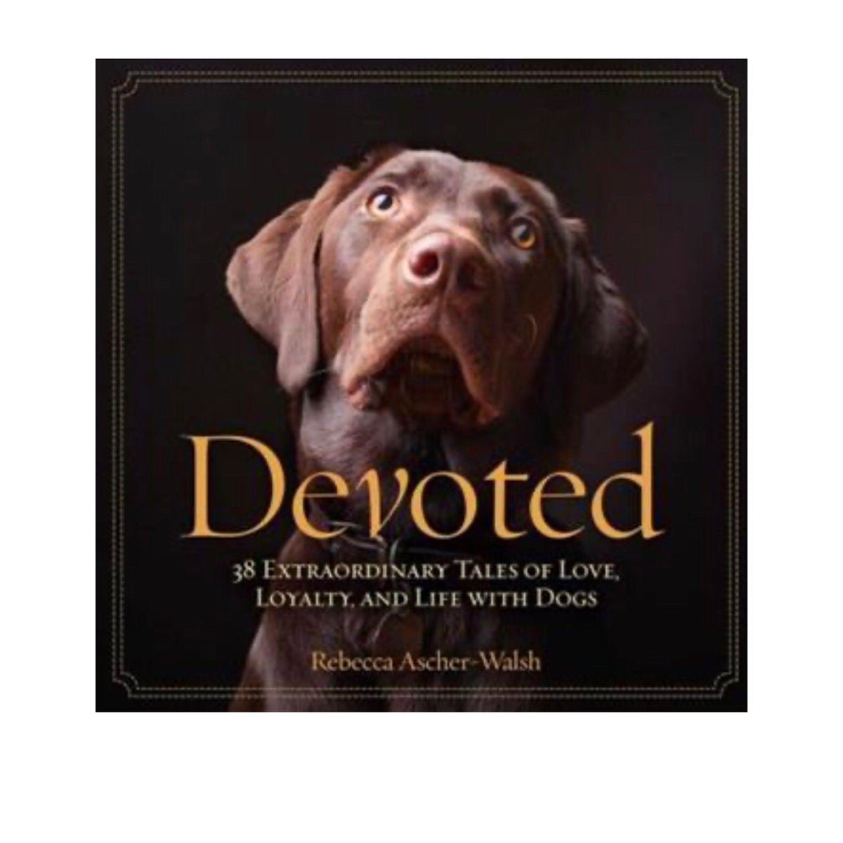 Devoted - A Gift Book Gift Books National Geographic