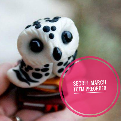 SECRET PRE ORDER Snowy Owl with books