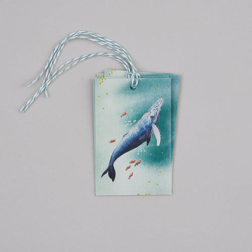 Whale Gift Tags