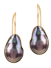 Amadeus Venus Grey Pearl Earrings In Gold Shell - LDC