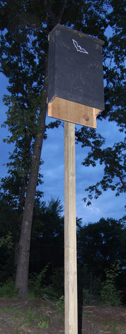 bat house on wood pole