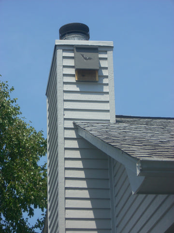 Bat House Placement Near Chimney