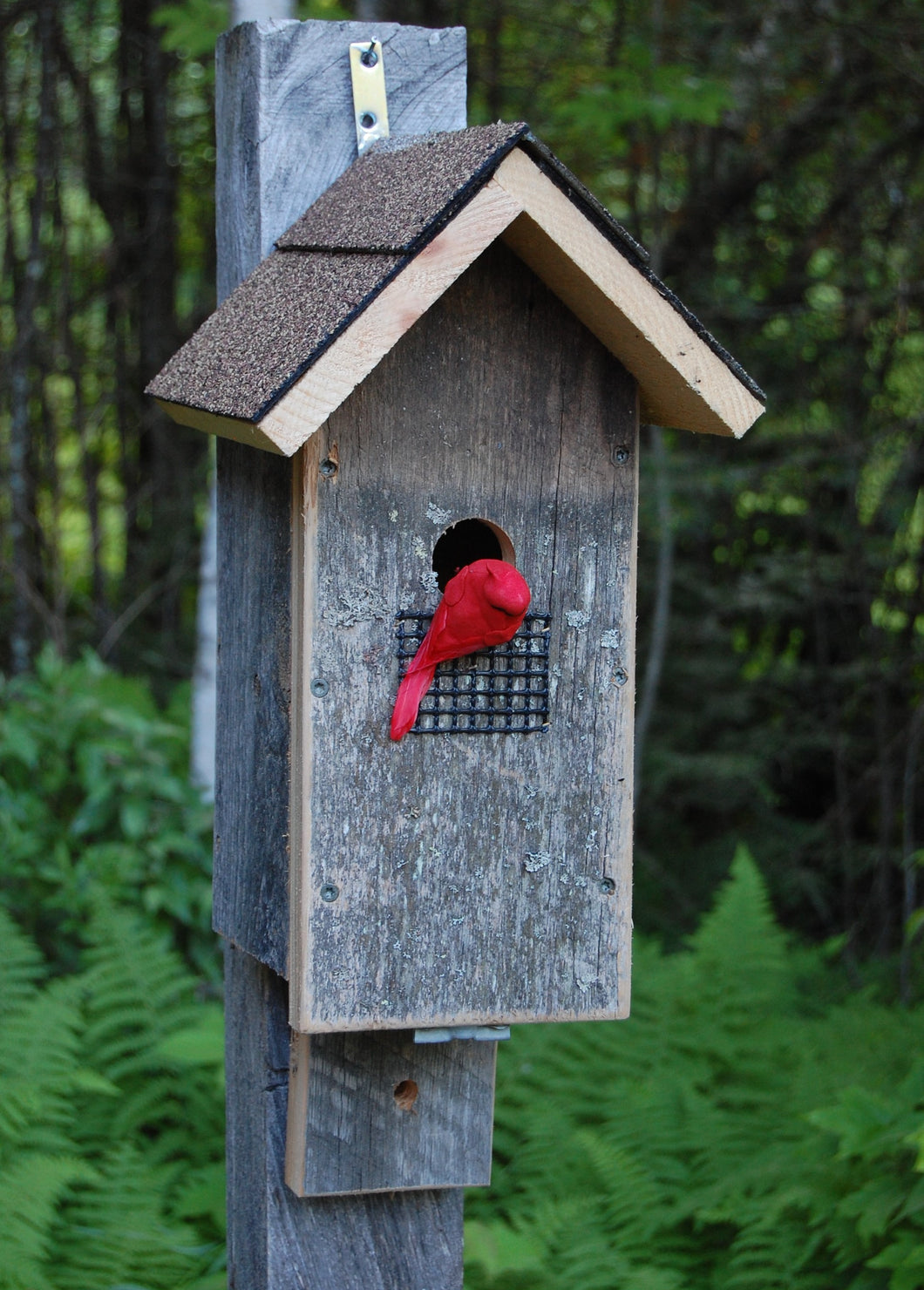 Barn Board Bird House - Limited Edition