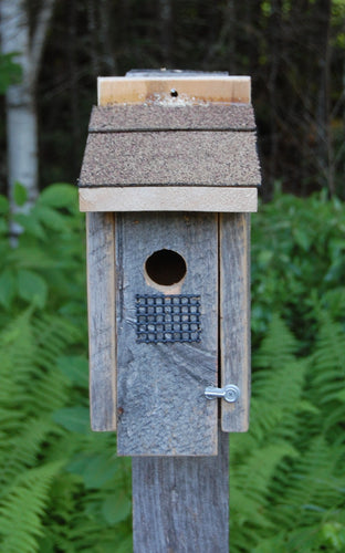 Barn Board Warbler Bird House - Limited Edition