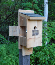 Load image into Gallery viewer, Bluebird House with Side Viewing Door