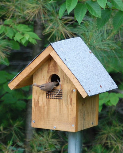 Flycatcher Bird House
