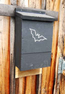 Small Bat House