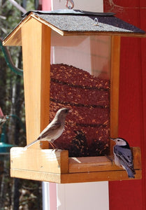 Tall Hanging Bird Feeder