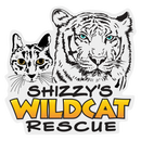 Shizzys Wildcat Rescue