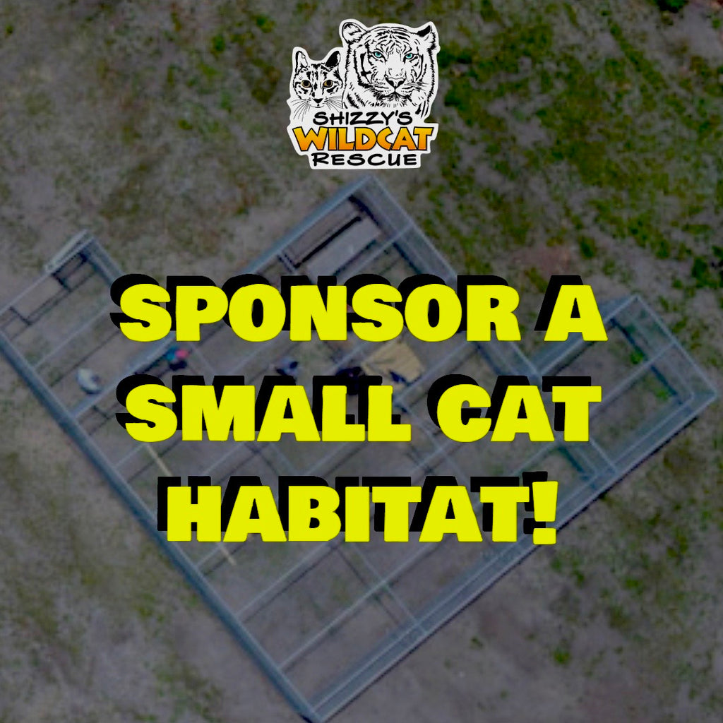 Sponsor a Small Cat Habitat!