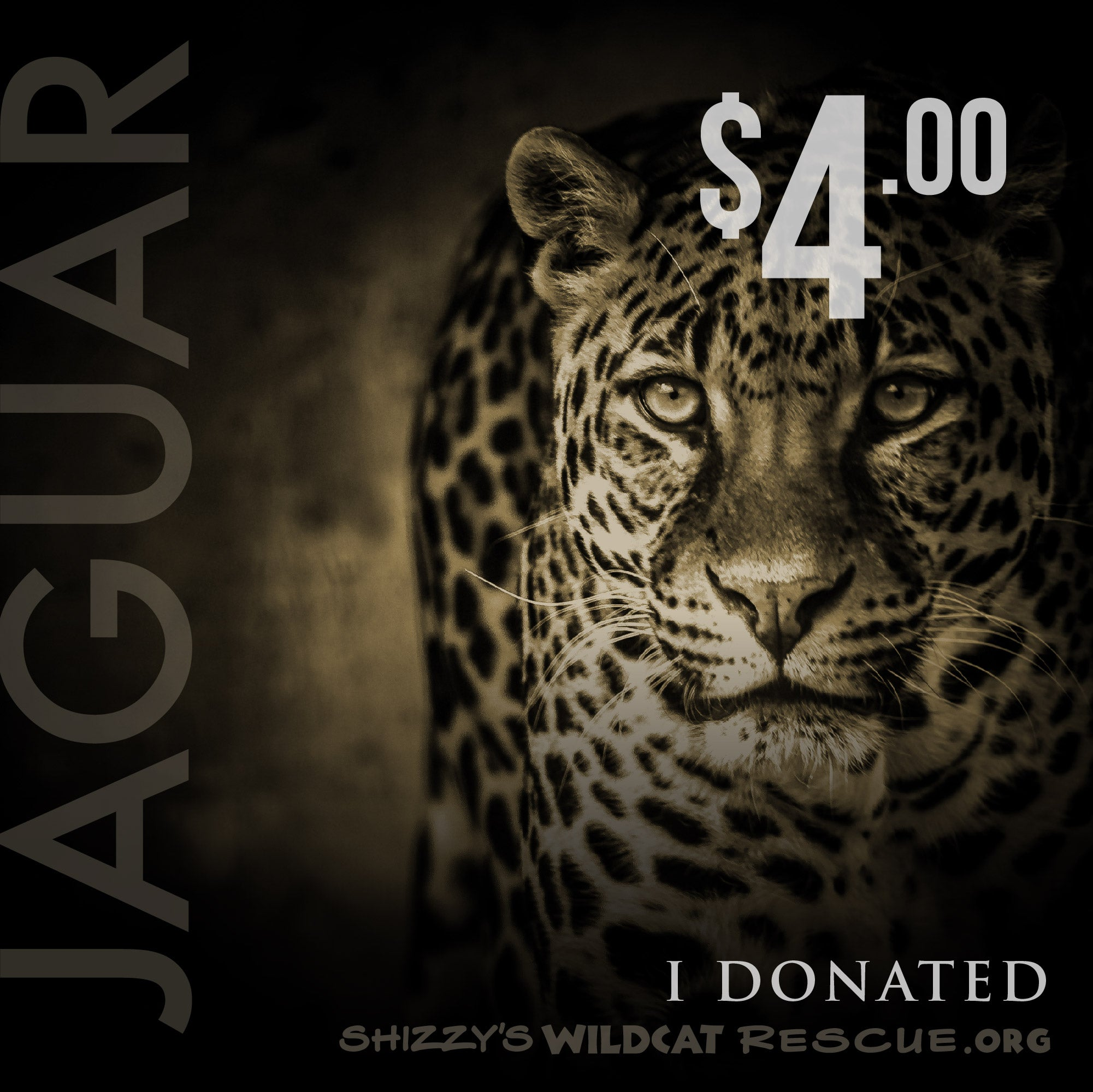$4 Donation: JAGUAR