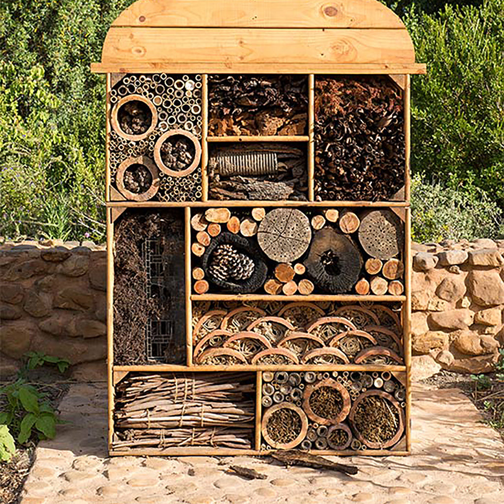 A room at the insect hotel?