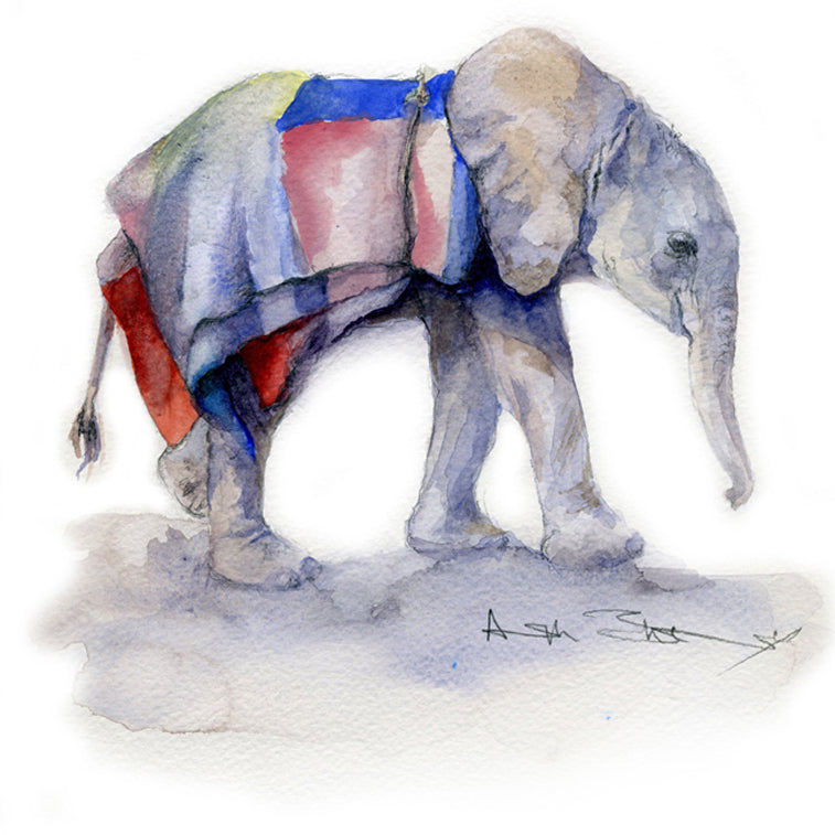 Elephant watercolours by Angela Sheldrick