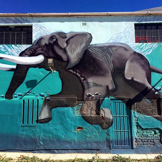 African street art | Elephant mural on the corner of Frere Street and Albert Road Woodstock, Cape Town South Africa