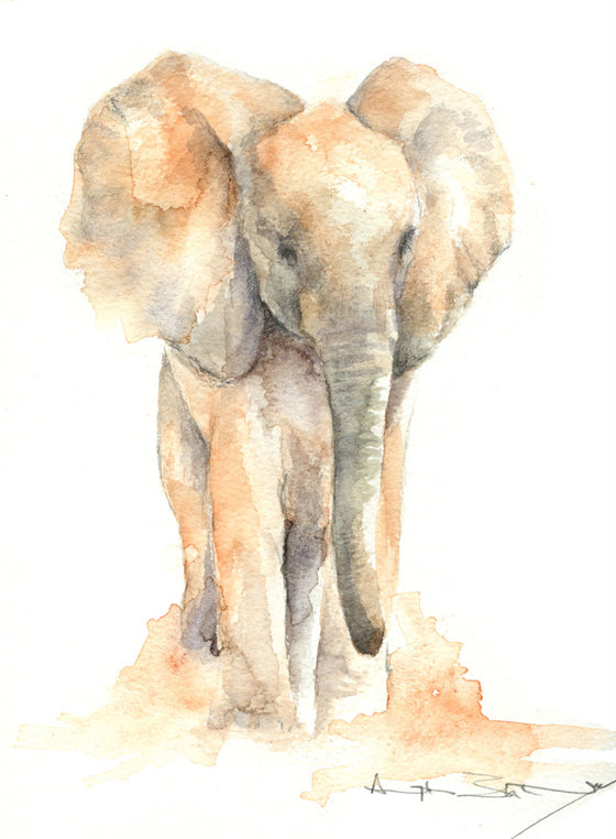 Safari Journal / Blog by Safari Fusion | Elephant watercolours by Angela Sheldrick | Beautiful original artworks from Kenya