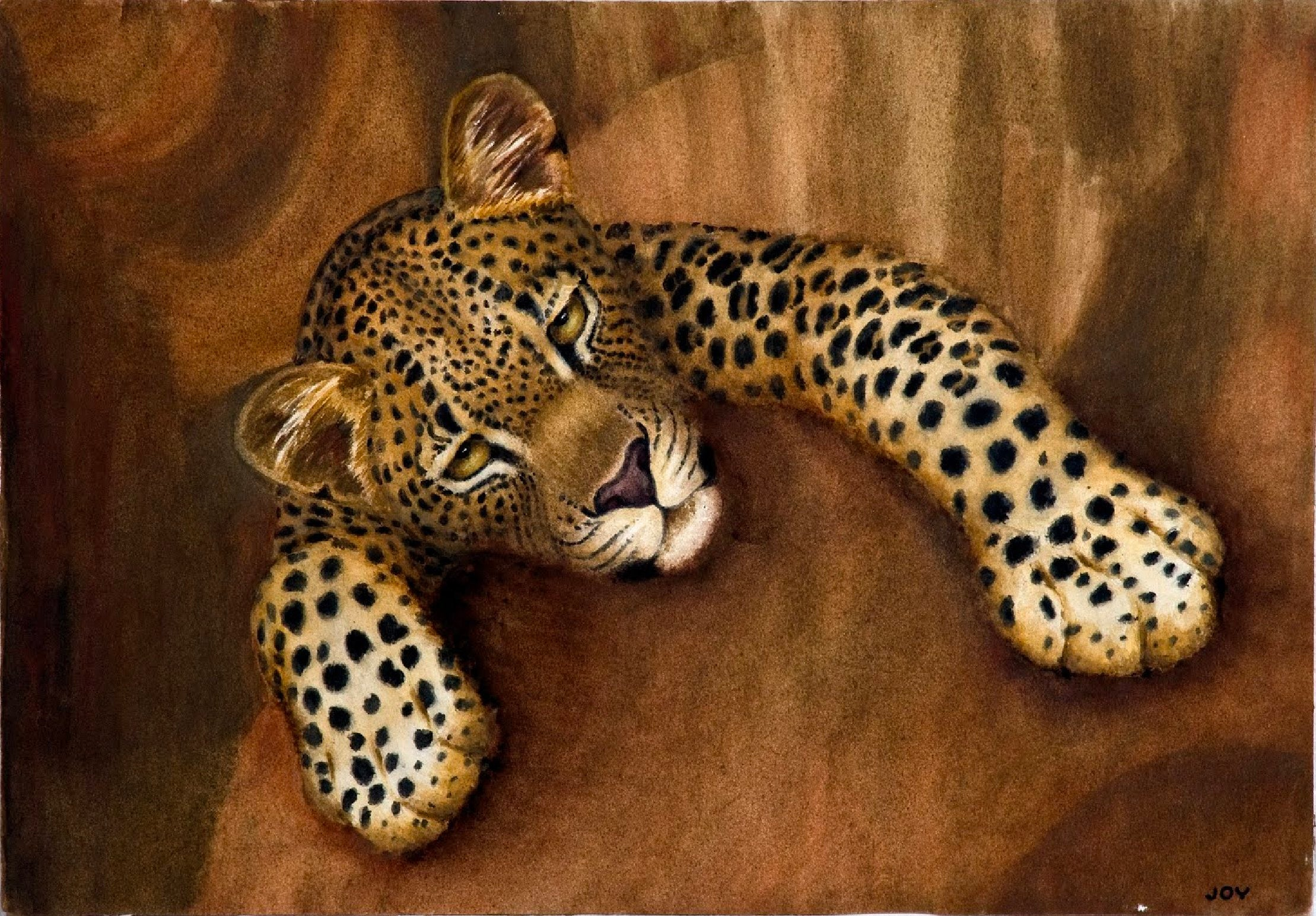 Safari Journal / Blog by Safari Fusion | Joy Adamson watercolours | Leopard, National Museums of Kenya