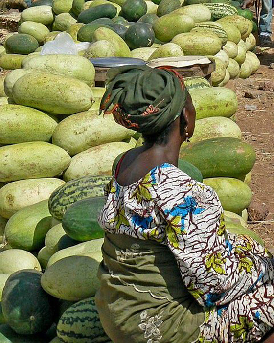 Safari Journal / Blog by Safari Fusion | Greenery | Selling melons at a market in Mali, West Africa
