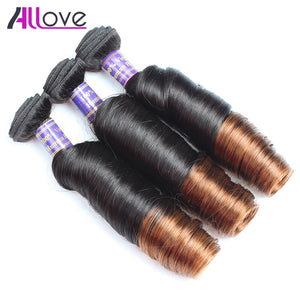 Ombre Hair Weave 3 Bundles With Closure Peruvian Hair Spring Curly 1B/4# Remy Human Hair Weave Bundles Free Shipping - LIZ'B'HAIR