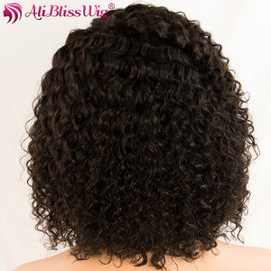 Curly Human Hair Wig 150% Density Short Lace Front Wigs Brazilian Remy Hair Medium Cap Swiss Lace - LIZ'B'HAIR