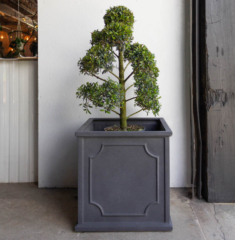 Trend Design Square Planter