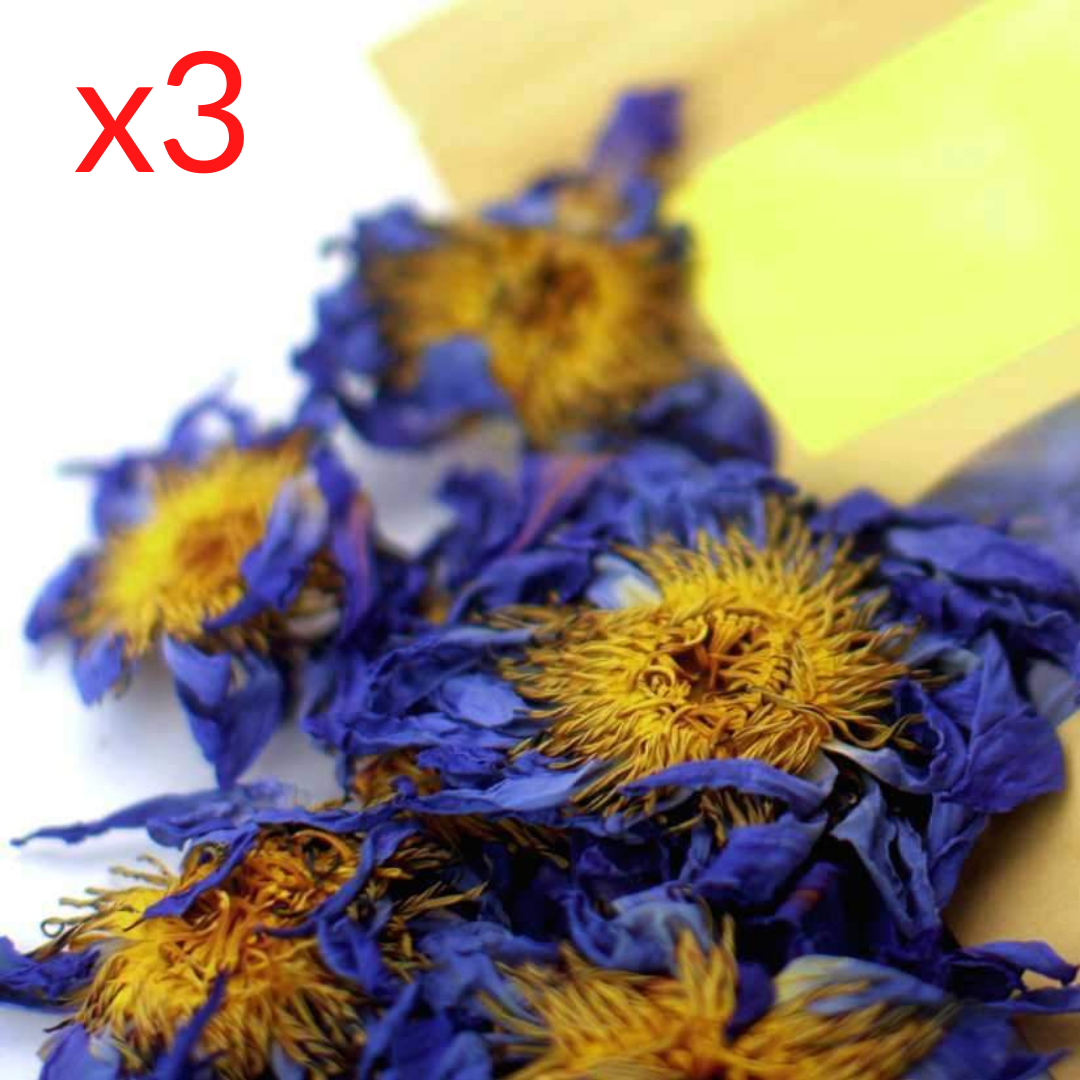 3 Pack of Blue Lotus Flowers - Save 11%